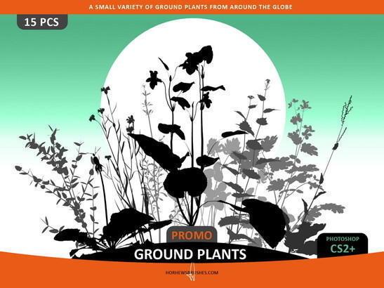 Ground Plants Selection Photoshop brush