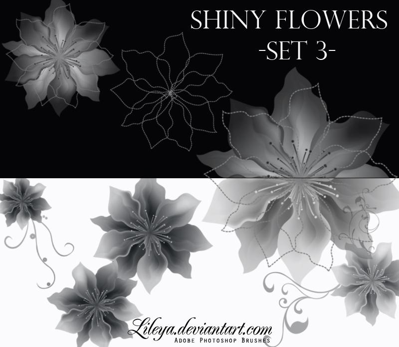 Shiny Flowers set 3 Photoshop brush