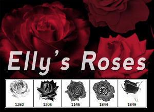 5 Rose Brushes By DesignerFied Photoshop brush