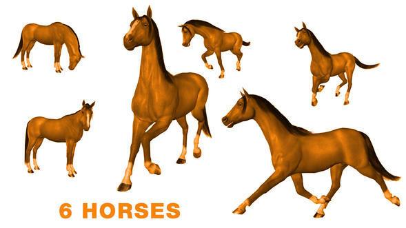 6 HORSE BRUSHES Photoshop brush