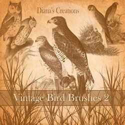 Vintage Bird Brushes 2 Photoshop brush