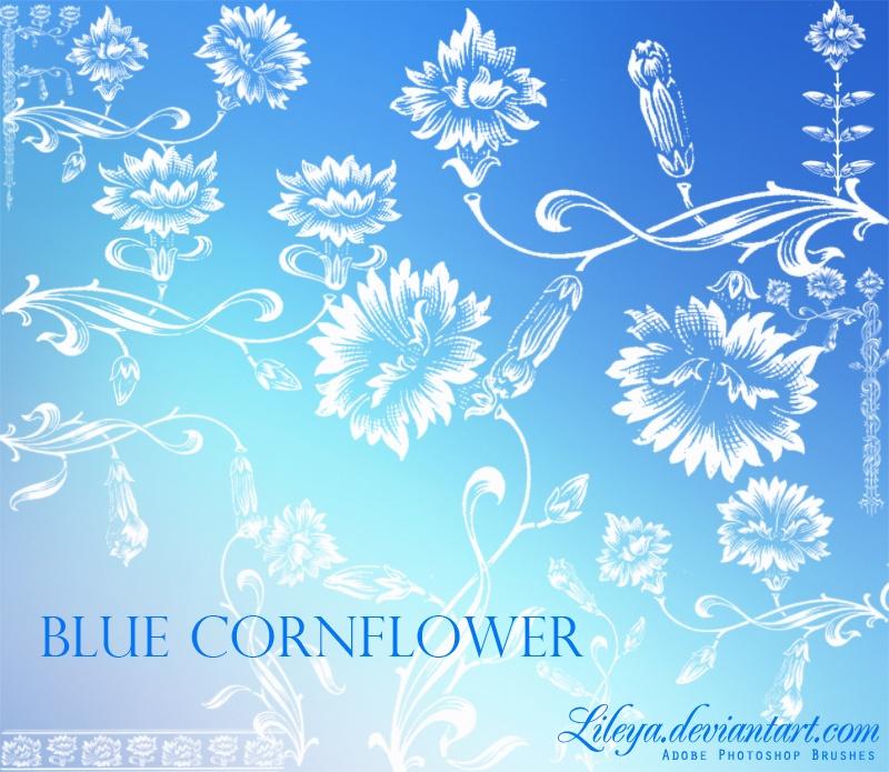 Blue Cornflower Photoshop brush