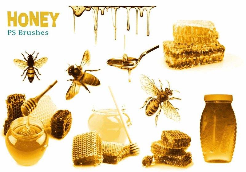 20 Honey PS Brushes abr.  vol.2 Photoshop brush