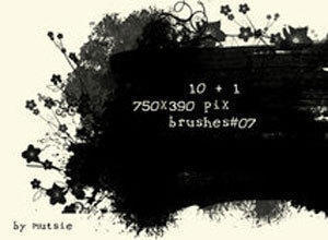 More Banner Brushes Photoshop brush
