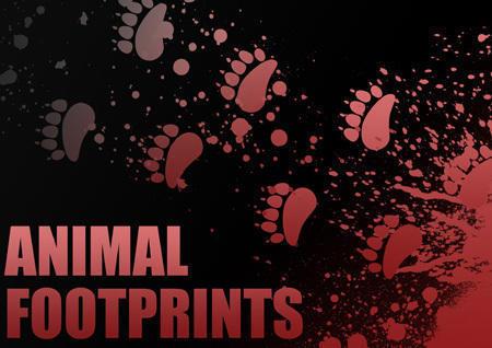Individual Animal Footprint Brushes Photoshop brush
