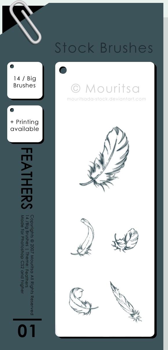 Feathers Photoshop brush