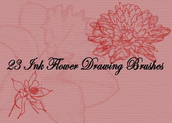 Ink Drawing Flower Brushes Photoshop brush