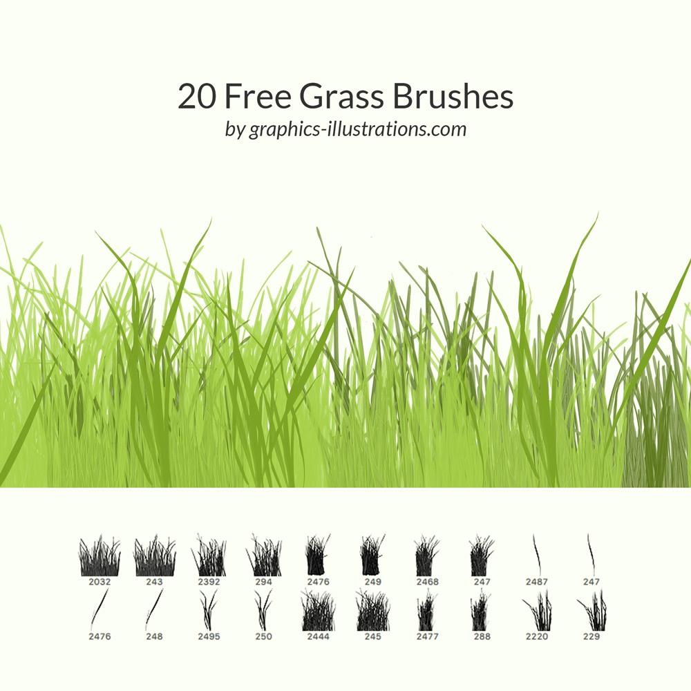 20 Free Grass Brushes Photoshop brush