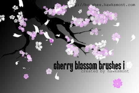Cherry Blossom 1 Photoshop brush
