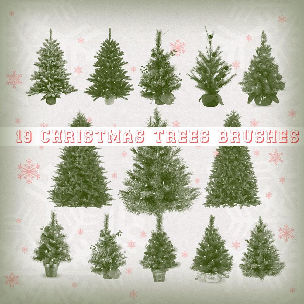 19 Christmas Trees Brushes Photoshop brush