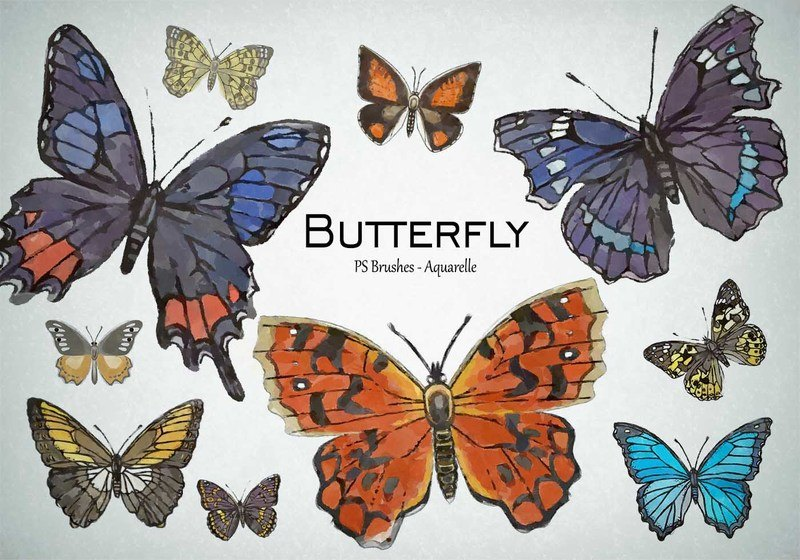 20 Butterfly PS Brushes abr.Vol.7 Photoshop brush