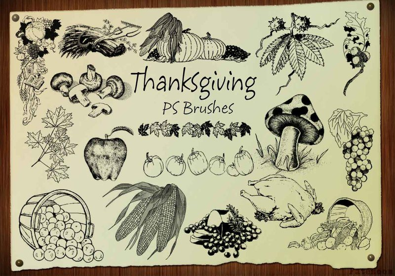 20 Thanksgiving Engraved PS Brushes abr. Vol.3 Photoshop brush
