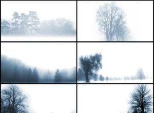 Beyond the Mist Photoshop brush