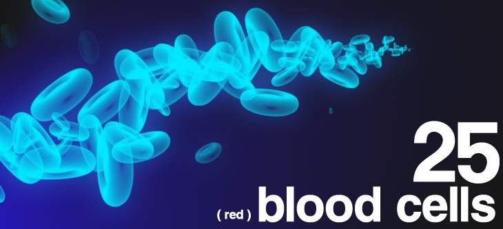 25 Red Blood Cells Photoshop brush