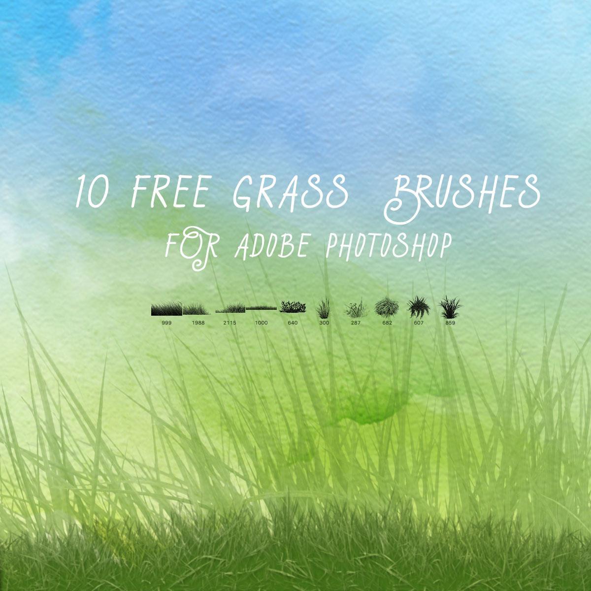 10 Free Grass Brushes Photoshop brush