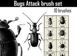 Bugs Attack Photoshop brush
