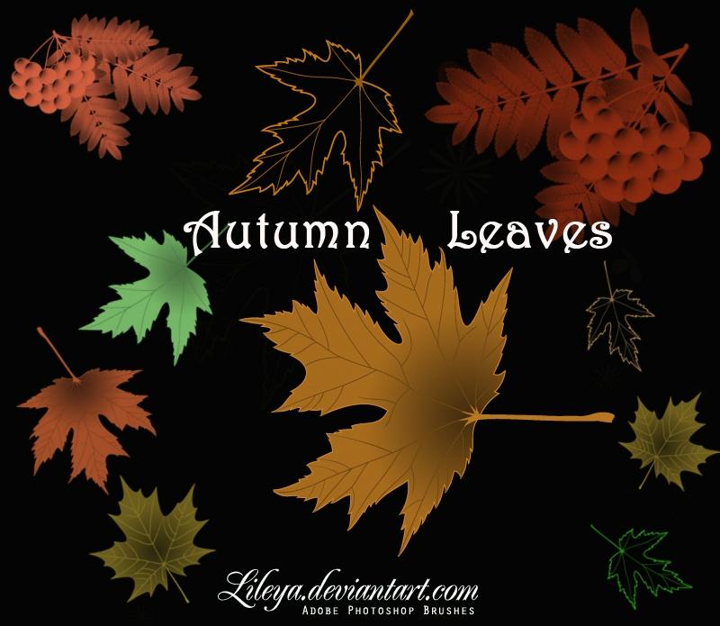 Autumn Leaves Photoshop brush