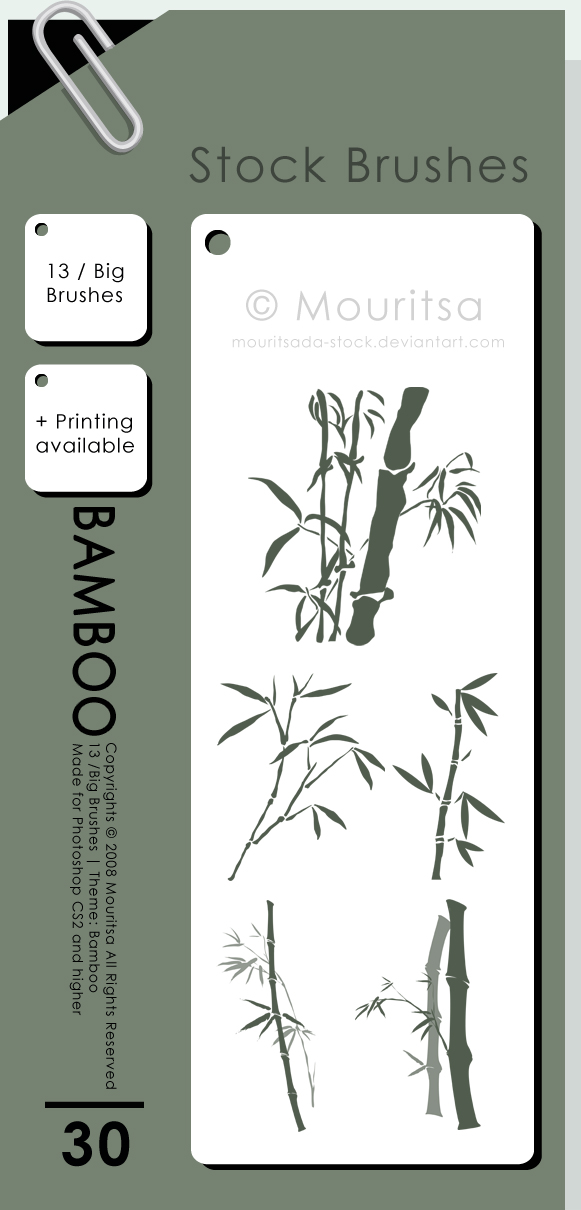 Bamboo Photoshop brush