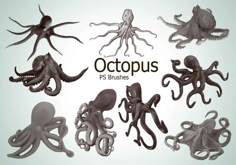 20 Octopus PS Brushes abr.vol.3 Photoshop brush