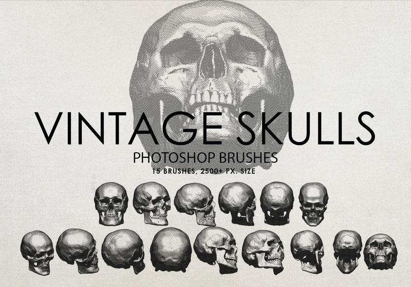 Free Vintage Skulls Photoshop Brushes Photoshop brush