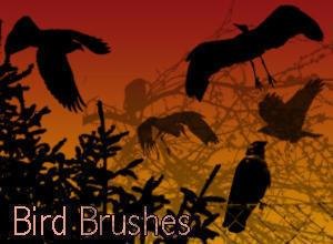 18 Bird Brushes Photoshop brush