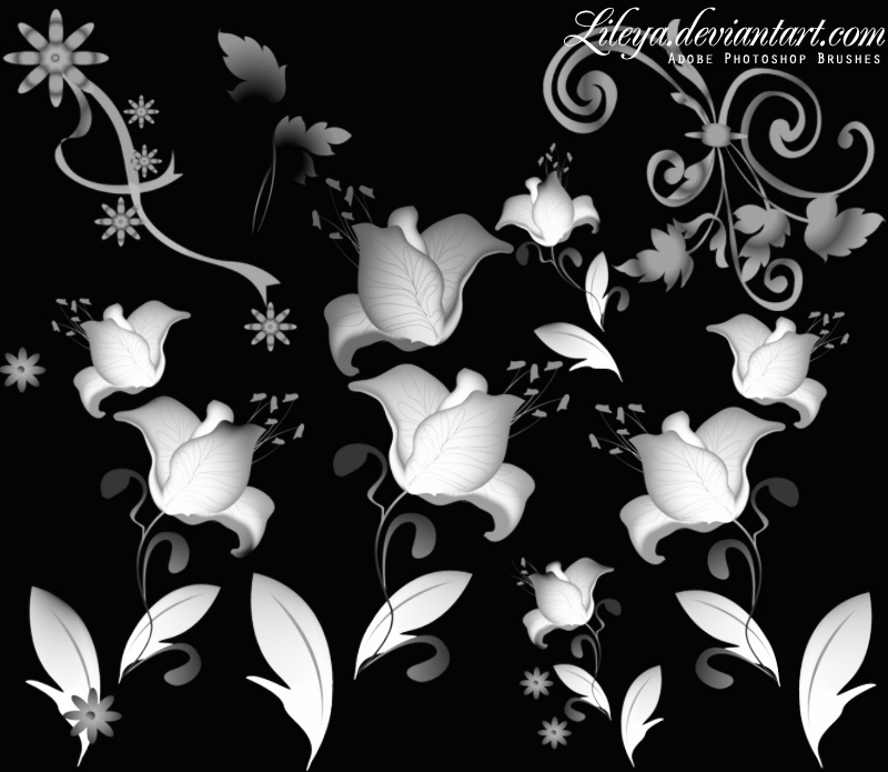 Floral Ornament Photoshop brush