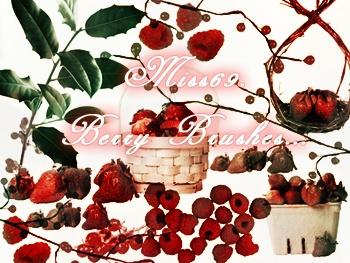 Berries Photoshop brush