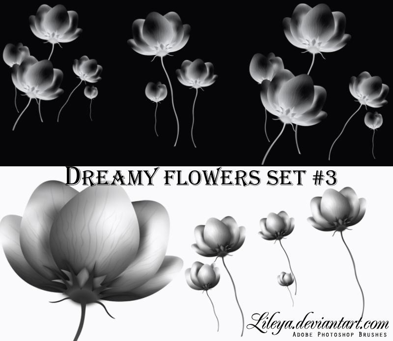 Dreamy Flowers set 3 Photoshop brush