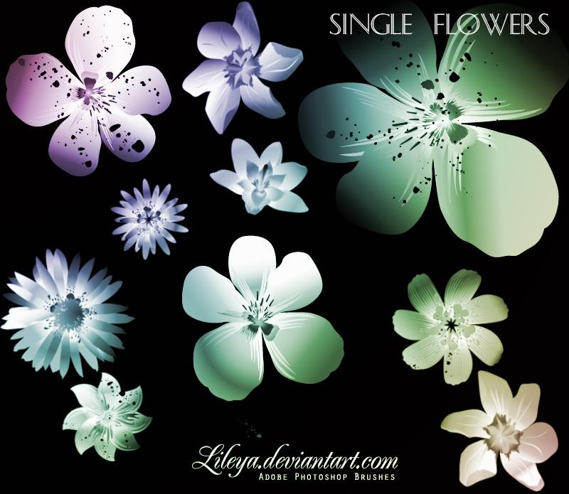 Single Flowers Photoshop brush