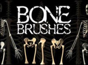 Bones Photoshop brush