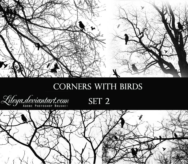 Corners with Birds 2 Photoshop brush