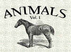 Animals Vol. I Photoshop brush