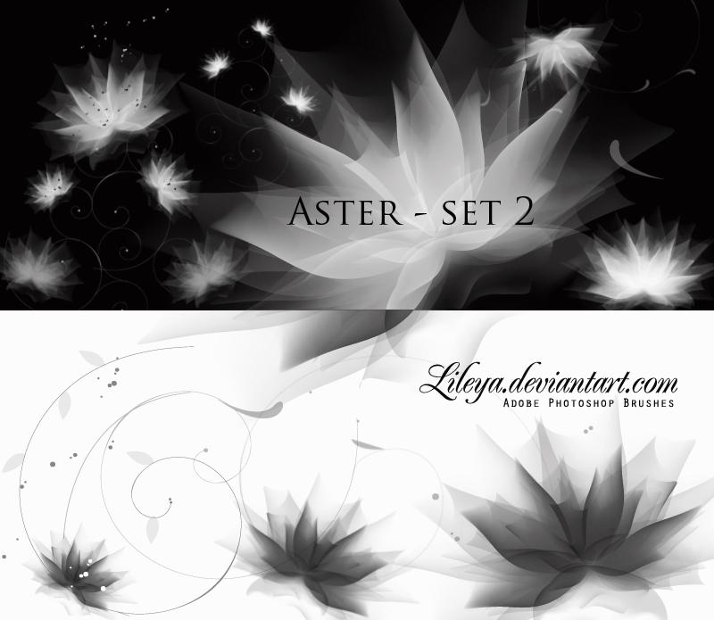Aster set 2 Photoshop brush