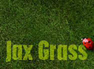 Jax Grass Brushes Photoshop brush