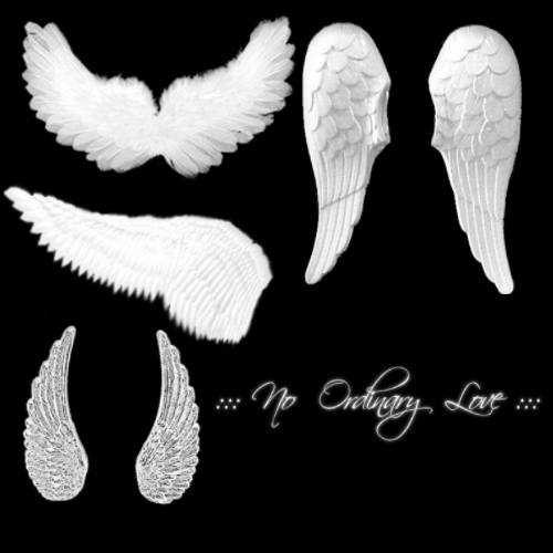 Angel Wings 2 Photoshop brush