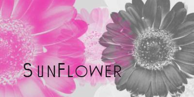 Sun Flower Brushes for Photoshop Photoshop brush