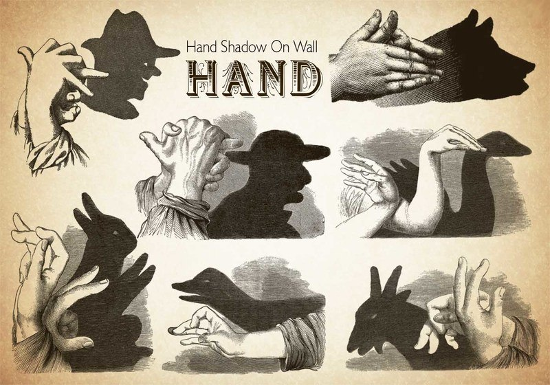 20 Hand PS Brushes abr.Vol.5 Photoshop brush