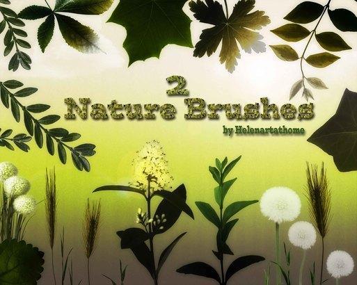 Nature2 Brushes Photoshop brush