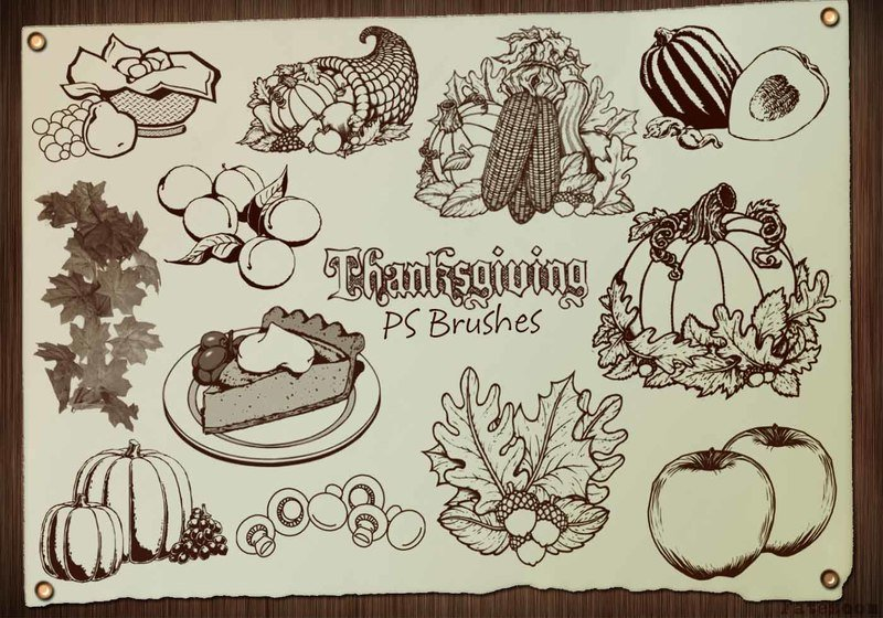 20 Thanksgiving PS Brushes abr. Vol.4 Photoshop brush