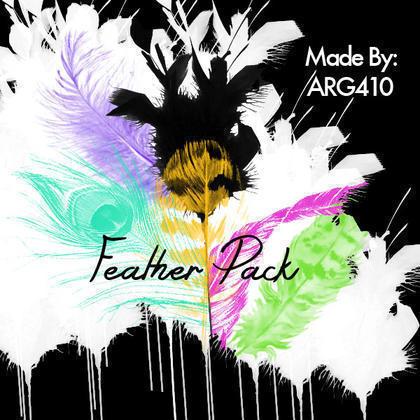 Beautiful Feather Brush Pack (6 Feathers) Photoshop brush