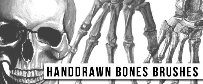 Handdrawn Bones Brushes Photoshop brush