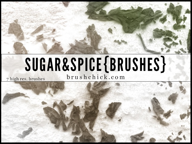Sugar & Spice Photoshop brush