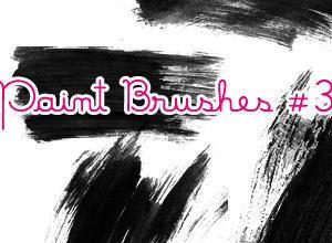 Paint Brushes #3 Photoshop brush