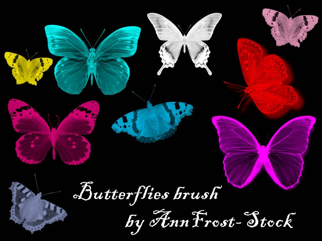 Butterflies brush Photoshop brush