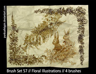 Floral Illustrations Photoshop brush