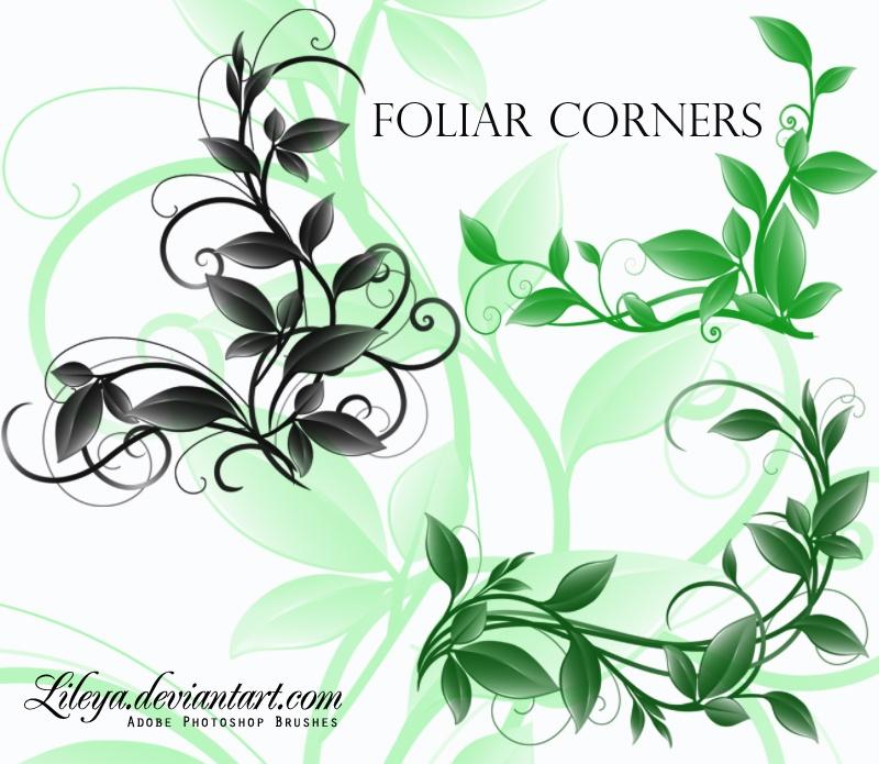 Foliar Corners Photoshop brush