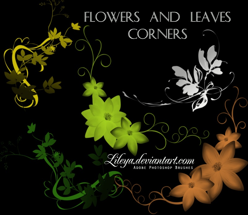 Flowers and Leaves Corners Photoshop brush