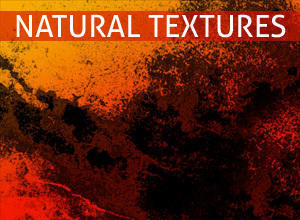 Natural Texture Brushes Photoshop brush