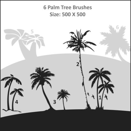 Palm Tree Brushes Photoshop brush