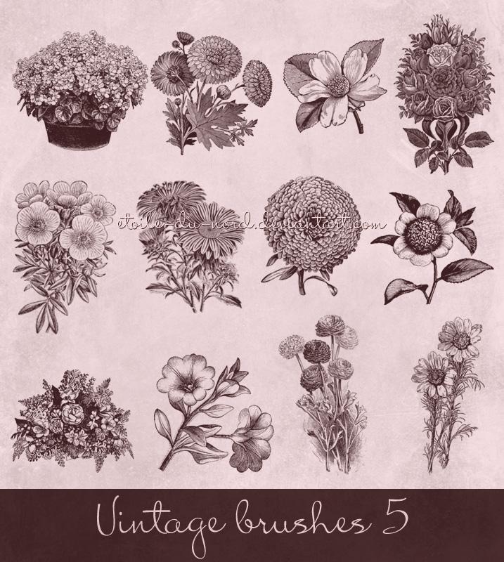 Vintage Flowers Brushes Photoshop brush
